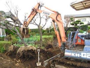 ガレージ設置スペース確保のため、植栽を移動&整地します。